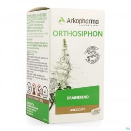 Arkogelules Orthosiphon...