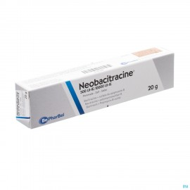 Neobacitracine Nf Pomm. Derm. 20g