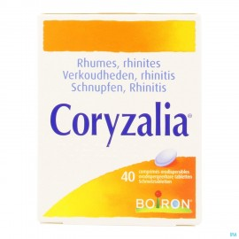 Coryzalia rhume, rhinites